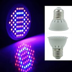 Special Offers - eSavebulbs 3W Hydroponic LED Grow LightsE27 Plant Grow BulbsRed Blue Light for Indoor Plants60 LEDs 2835SMD 44Red/16BlueLed Light For Indoor Plants For Sale - In stock & Free Shipping. You can save more money! Check It (October 21 2016 at 08:07PM) >> http://growlightusa.net/esavebulbs-3w-hydroponic-led-grow-lightse27-plant-grow-bulbsred-blue-light-for-indoor-plants60-leds-2835smd-44red16blueled-light-for-indoor-plants-for-sale/