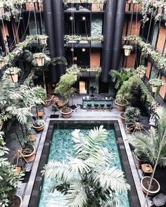 """2,490 mentions J'aime, 31 commentaires - Pauline Egge (@petitepassport) sur Instagram : """"And the most popular spot of last month is Manon les Suites in Copenhagen! See the whole list on…"""""""