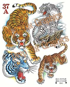 Image of Tigers Japanese Tiger Tattoo, Ronin Samurai, Tiger Images, Thai Tattoo, Cover Up Tattoos, Japanese Embroidery, Flash Art, Irezumi, Back Tattoo