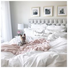 Home Interior Velas 40 Grey and White Bedroom Ideas.Home Interior Velas 40 Grey and White Bedroom Ideas White Gray Bedroom, Light Pink Bedrooms, Grey And Gold Bedroom, Gold Bedroom Decor, Glam Bedroom, Bedroom Colors, Girls Bedroom, Bedroom Ideas, Trendy Bedroom