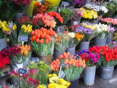 Flowers for sale in Paris.