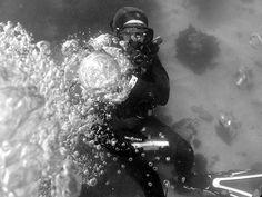 Dec 16, 2012 SDG La Jolla Cove Dive   Fun, Fun, Fun in cold …   Flickr