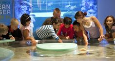 #FindFunFast with #family and #friends in #Milwaukee at #DiscoveryWorld. #ThingsToDoInMilwaukee #FindFunInMilwaukee #Wisconsin