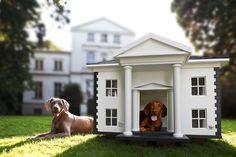 Fancy dog houses...