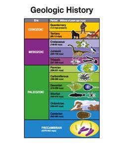 Blank Geologic Time Scale Worksheet   Dino   Pinterest   Worksheets