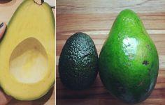 Schon mal eine #Slimcado gesehen? Sieht aus wie eine normale Avocado ist aber dreimal so groß. Der Clou: Eine Slimcado hat nur... #Superfood #Avocado