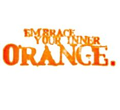 What rhymes with Orange? I don't know, but tonight and tomorrow let's embrace our inner Orange inside and outside the Cottage. Have a perfectly Orange-y day! Tennessee Football, Go Vols, Oklahoma State University, Color Naranja, Coral, Orange You Glad, Tennessee Volunteers, Orange Crush, Orange Is The New Black