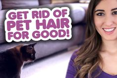 Get Rid of Pet Hair for Good!
