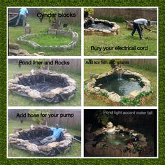 Koi Pond. Steps to building a Koi Pond.