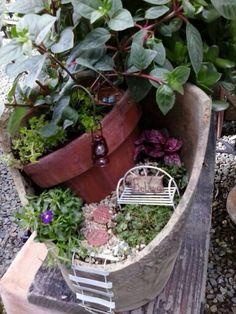 My first broken pot mini garden