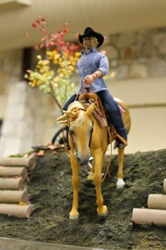 Braymere Custom Saddlery: Live show pictures