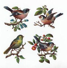 Victorian Scraps Birds