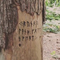 A hidden message spotted in the woods! #runes #writing #text #secret #pagan #norse #viking #germanic #anglosaxon #futhark #elderfuthark #pagansofinstagram