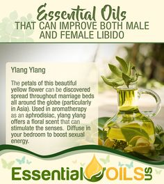If you're looking to spice up your bedroom, consider these essential oils to increase sex drive. You'll also find some great blend recipes. Essential Oil Aphrodisiac, Essential Oil Perfume, Essential Oil Uses, Easential Oils, Female Libido, Diffuser Blends, Natural Medicine, Diy Beauty, Beauty Tips