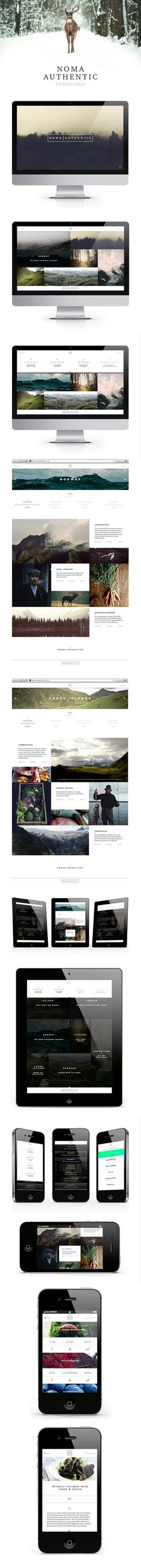 Noma Authentic.  I love the clean layout and photos of nature in this design.  It's very appealing to me and works well with their concept of having people want to learn more about commodity, hunting and fishing in  Scandinavia.: