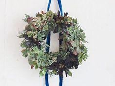 Click to enlarge image succulent-wreath.Succulent Wreath How-To via Frankie Magazine #make #craft #succulent #plants #planter #wreath #home #decor
