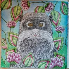 Tamarin monkey using Faber Castell Polychromos colored pencils.
