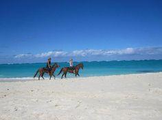 Horseback riding in Turks & Caicos Caribbean Vacations, Dream Vacations, Turks And Caicos Providenciales, Grace Bay Beach, Grand Cayman, Beaches In The World, Island Life, Beautiful Islands, Horseback Riding