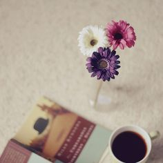 booksandtea:  lazy morning by the cheshire smile on Flickr.