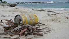 A marine ecology expert says it could take an international effort to manage the amount of debris and pollution that washes up on Rottnest Island.