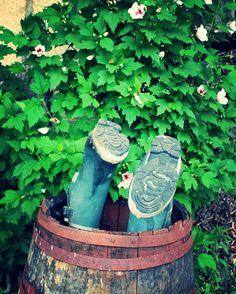 2 mentions J'aime, 1 commentaires - @sapo_vadrouille sur Instagram: «#valleeduloir #valléeduloir #vigne #vignoble #jasnieres #jasnières #vin #wine #sarthe»
