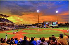 Albuquerque Isotopes - Love the Isotopes!