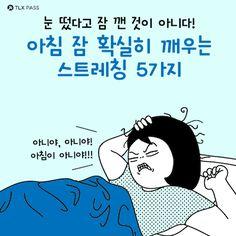 [BY TLX PASS] 아침마다 몸과 마음에 활력을 불어넣자! 아침 스트레칭은 신체의 가동능력을 넓혀 신진대...
