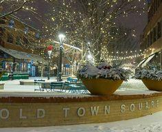 ❤️Fort Collins❄️ Denver Colorado, Visit Colorado, Colorado Trip, Disneyland Main Street, Fort Collins Colorado, Colorado State University, Old Town Square, Christmas Photography, The Mountains Are Calling