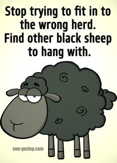 Image result for black sheep of the family quotes