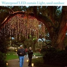 LED Concepts Curtain String Icicle Fairy Lights – 300 LEDs with 8 lighting modes - Garden Design DIY Outdoor Tree Lighting, Outdoor Trees, Backyard Lighting, String Lights Outdoor, Cool Lighting, Outdoor Gardens, Outdoor Fairy Lights, Light String, Outside Lighting Ideas