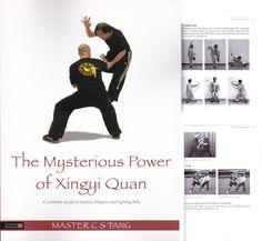 Martial Arts Books, Shaolin Kung Fu, Wing Chun, My Books, Mystery, Reading, Car, Sports, Movie Posters