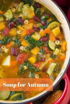 TIS the season! It is time for soup. These are some perfect recipes for this fall season. Soups that are easy to make and also budget friendly. Warm up with these recipes.