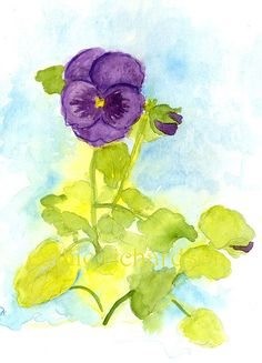 Purple Pansy Watercolor Painting