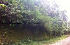 Bora imoveis - www.boraimoveis.com.br | Imobiliária em Mairiporã - Sp | Imóveis em Mairiporã - Terreno em Condomínio para Venda - Mairiporã / SP no bairro Jardim Cinco Lagos, área total 1375