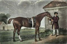 This is one of George Stubbs' many portraits of racehorses, painted at Newmarket, close to the famous English race course