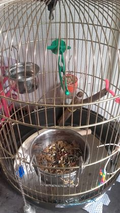 Cage spécial pour pas s'accrocher :)