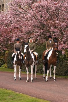 Zara Phillips, HM The Queen and the Princess Royal on horseback at Windsor, 10th April 2004. | Royal Collection Trust Photograph of HM The Queen (b.1926) riding on Tinkerbell, Princess Anne (b.1950) on Peter Pan and The Queen's granddaughter, Zara Phillips (b.1981) on Tiger Lily, with pink blossom trees in background, at Windsor.
