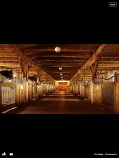 I love the wood, and the lights! And I love the stall doors so then the horses can stick there head out!