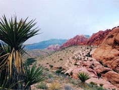 13 photos that show Nevada at its best #travel