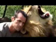 Lion King Kevin Richardson