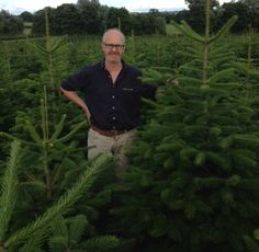 Choosing locally grown, late cut Christmas trees - it's all about getting the very best!