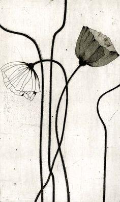 Ideas For Flowers Illustration Tattoo Poppies Illustration Botanique, Art Et Illustration, Art Floral, Et Tattoo, Art Japonais, Art Design, Shape Design, White Art, Botanical Prints