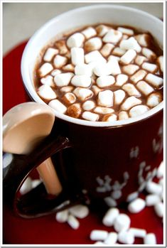 Thick, Creamy, Italian Style Hot Chocolate. Make the mix, you're good to go for 10 servings whenever you are ready for it! Just heat the milk!