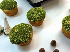 Sugar Swings! Serve Some: Woodland Gnome Cupcakes Tutorial with Edible Moss