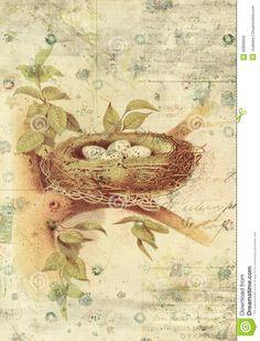 vintage Bird wall art - Google Search