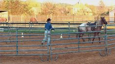 Video: How to Train a Horse to Stop Bucking.