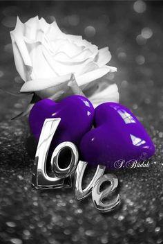 Love Feeling Images, Love Heart Images, Love You Images, Romantic Pictures, Romantic Love, Beautiful Love, Cute Love, Purple Art, Purple Love