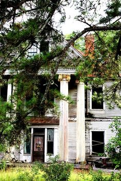 makes me sad to see the old Antebellum homes falling down- this is a second picture of the house I love in Baker County, GA. Can't believe it is this popular!