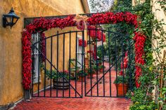 A Little Southwestern Color in Old Town Albuquerque, New Mexico
