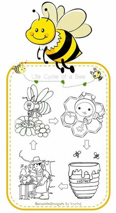 Home Activities, Science Activities, Yom Kippur Activities, Insect Crafts, Science Biology, Rosh Hashanah, Animal Crafts, Puppets, Preschool